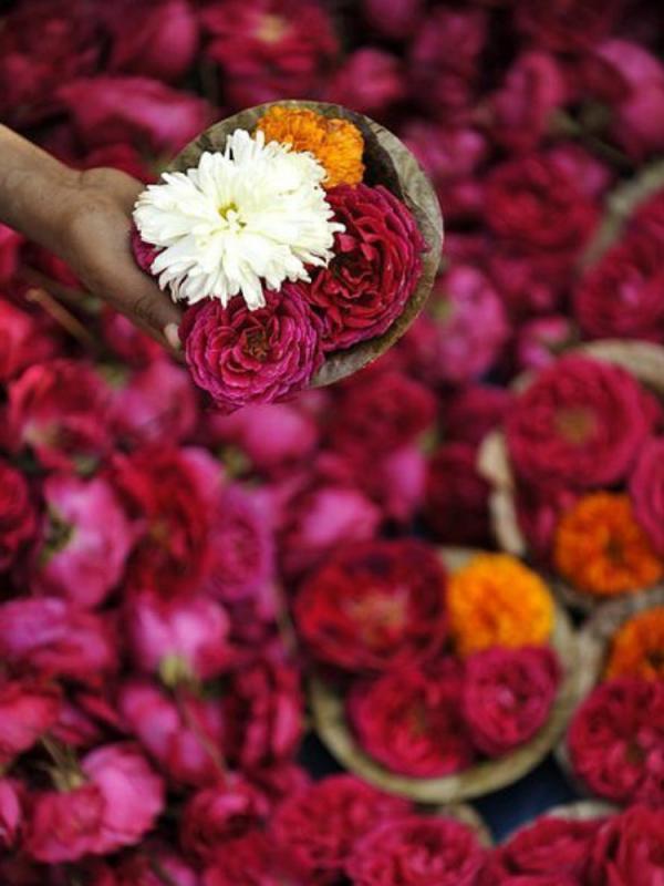 The beauty of flower offerings Funnyhowflowersdothat.co.uk